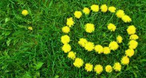 Három vers a tavaszról - íme összeállításunk.