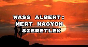 Jöjjön Wass Albert: Mert nagyon szeretlek verse.